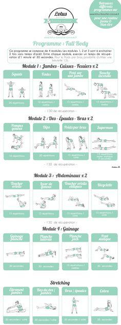 Programme Full body par module (n°2)