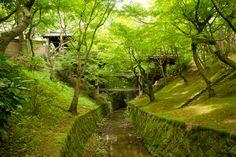 Tofukuji Zen Garden Kyoto JAPAN
