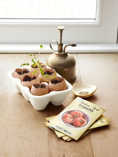 Recycle your cracked eggshells turning them into adorable — and earth-friendly — seed starters.