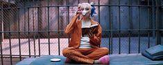 gif, harley quinn, Margot Robbie, suicide squad, joker x harley Joker Y Harley Quinn, Margot Robbie Harley Quinn, Harley Quinn Cosplay, Joker Batman, Margot Robbie Tumblr, Marvel Dc, Em Breve Nos Cinemas, Joker Queen, Movie Trailers