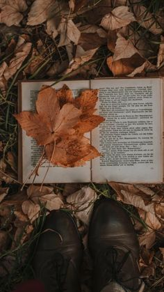 Cozy Aesthetic, Autumn Aesthetic, Brown Aesthetic, Aesthetic Vintage, Book Wallpaper, Fall Wallpaper, Autumn Photography, Book Photography, Inspiration Photography