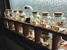 「金魚(フィギュア)の瓶詰め」の作り方&ディスプレイ|スチームパンク大百科