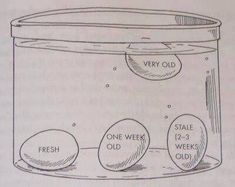 Use this water test to determine how fresh or old your eggs are. (Only the one floating should be discarded).