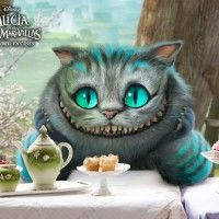 #dogalize Alicia en El Pais de las Maravillas: El Gato #dogs #cats #pets