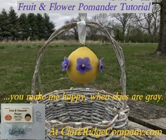 These Fruit & Flower Pomanders & Kissing Balls are super easy to make but just beautiful! They have the timeless, classic beauty of nature and add a punch of fresh color to their surroundings. Any color combinations can be used to fit your theme. They make great decorations for weddings, bridal and baby showers, brunch or dinner parties, birthday parties, and holidays! A fun, easy activity for children, too!