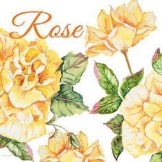 Rose (121 pieces)