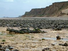 A view of the famous West Runton beach, a great place to find fossils.