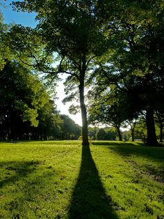 The appropriately named Luke Summers took this picture in Backhouse Park, Sunderland, on a warm autumn day
