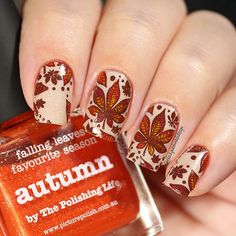 WEBSTA @ blackqueennailsdesign - Autumn Nails I used following .From @whatsupnails  Stamping plate B021  with my code ✨blackqueennails10✨ you can get 10% off in your orders  at www.whatsupnails.com  #whatsupnails .From @picturepolish ❤️ Cherish • Autumn • Sunflower • Remember #picturepolish #harlowandco .Stuff purple around the nail Liquid Palisade by @kiesque  .From @beautybigbangs