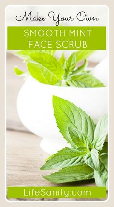 DIY Smooth Mint Face Scrub