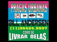 SP Dedetizadora: ℡11-3427-2276—96424-9997-tim – Pragas Urbanas Como se Livrar…