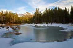 Icy Pond Jonathan Nguyen