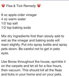 Flea and Tick Remedy