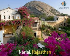 You have known bigger cities of Jaipur and Jodhpur. But ever heard of Narlai in Rajasthan? This subdued yet spectacular village on an invigorating back country road of Ranakpur promises a lavish holiday experience. The culturally rich sites and temples invite you for a visit.   #DelightfulDeals #RoyalRajasthan
