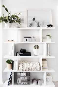 organization shelves