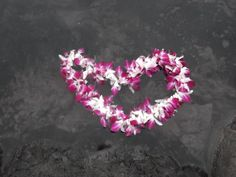 The release of a lei at Wai'anapanapa Beach