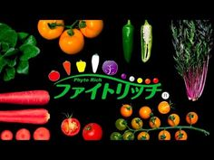 BENTO WATCH - YouTube