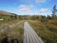 Jospa välillä käväisemme koto Suomessa. Täällä kun on lukemattomia paikkoja, minne voisi mennä mutta kaikki aikanaan.
