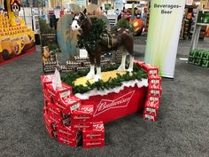 Discover Budweiser, the Great American Lager beer. Pos Display, Lager Beer, Point Of Sale, Clydesdale, Innovation, Increase Confidence, Beverages, Gift Wrapping, Concept