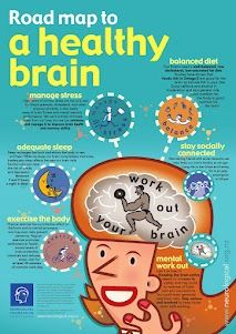 There it is, the map to brain fitness. Start with a workout.