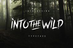 Into The Wild Typeface by pratamaydh on @creativemarket. Price $11