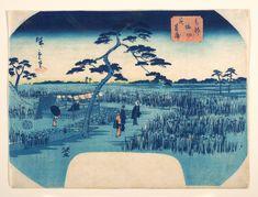 Utagawa Hiroshige II: View of Iris Gardens at Horikiri - Metropolitan Museum of Art