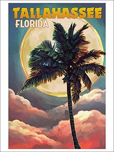 Tallahassee, Florida - Palm and Full Moon (9x12 Art Print, Wall Decor Poster) Lantern Press http://www.amazon.com/dp/B00Z4UB8QG/ref=cm_sw_r_pi_dp_dyc1vb0K9GXGE