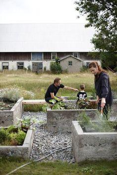 Jättefina gjutna betonglådor för växter