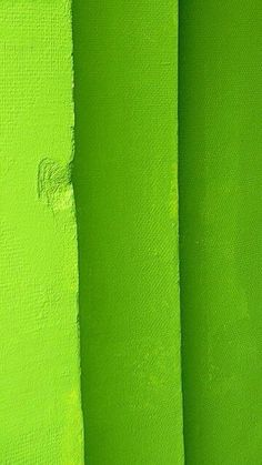 I painted one of my bedrooms this shade of green once. It was a sunny room, and I aggressively adore this color. It's the color of joy. Green Life, Green Day, World Of Color, Color Of Life, Bright Green, Green Colors, Green Stripes, Palette Verte, Terra Verde
