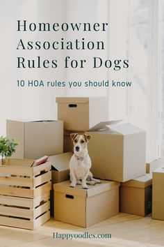 Did you know that when you buy into a planned community with a Homeowners Association you are also buying into all the rules and regulations that go along with it? Did you also know that some of those rules can affect your ability to own a dog or other pet? Here we list 10 common HOA rules for dogs and pets that you might not have thought of. (#HOAdogrules, #HOApetrules, #plannedcommunitiesandpets) Dog House Kit, Dog Food Delivery, Puppies Tips, Funny Dog Memes, Best Dog Training, Dog Rules, Dog Hacks, Medium Dogs, Baby Dogs