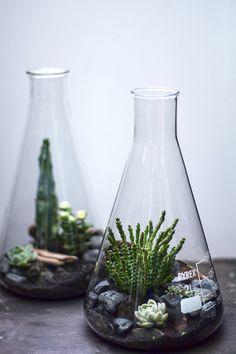 Lab Flasks - Hermetica London