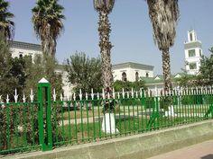 Alcazarquivir 165- gran mezquita jamma kebir