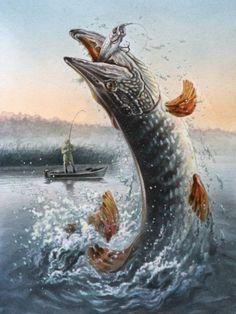 Pike Fishing, Bass Fishing, Fishing Knots, Fishing Tips, Fishing Cart, Fishing Shop, Walleye Fishing, Fish Artwork, Fish Wallpaper