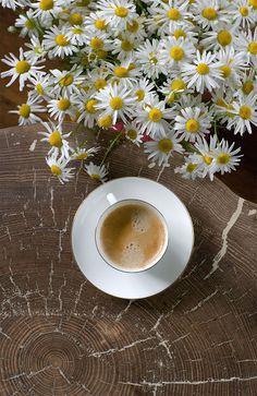 [Inspiração pela manhã #4] manhãs perfeitas, BLOG #manhãsperfeitas #perfectmornings