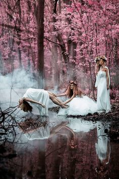 flower maiden ceremony in progress..my beautiful friend petal'' told me all about it! amazing really the tale of 4ever sisterhood entwined in nature...sounds enchanting,not for a girl like me though...better keep moving farther and farther away from queen evil berries..''feet move!''