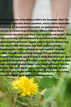 dandelions- this can be true for all children not just military.