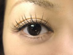 Lashes, Hair Beauty, Make Up, Bride, Ideas, Girls, Eyelashes, Maquillaje, Makeup