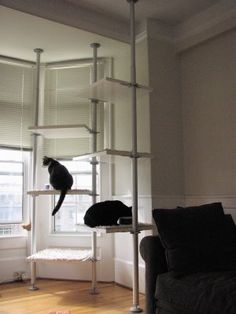 diy cat shelves built with Ikea Stolmen clothes storage system components, creates a minimal and extremely functional cat climber, makes great use of vertical space — perfect for small homes. Stolmen Ikea, Clothes Storage Systems, Clothing Storage, Cat Climbing Tree, Climbing Wall, Cat Climber, Diy Cat Tree, Cat Towers, Japanese Cat