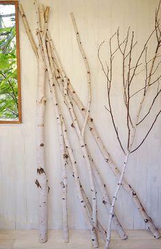 【楽天市場】白樺 天然木 丸太/枝付き インテリア 北欧 エクステリア ガーデン DIY 02P05Sep15:るーららい