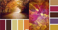 herfst-kleuren