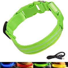 AMBESTKER  LED Dog Collars Bright Light USB Rechargeable Safety Pet Supplies Accessories M1620 inch Green * Click image to review more details.