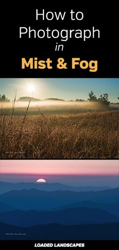 How to Photograph in Mist and Fog. Tips for getting better landscape and nature photos in bad weather conditions. Capture moody, powerful images. Photography, tutorial, rain. #photographytips #naturephotography