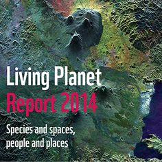 The Living Planet Report is the world's leading, science-based analysis on the health of our planet and the impact of human activity.