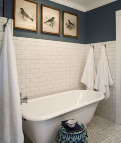 This is perfection - navy walls, grey grout, subway tile, bird prints