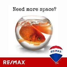 Senti il bisogno di avere più spazio? Allora entra in Remax House Business!! Potrai far parte di un Gruppo Immobiliare che in Italia conta più di 2.800 agenti immobiliari!!  ☎️Chiamaci al 0532/20.57.24 #limmobiliarenumero1almondo #entrainremax