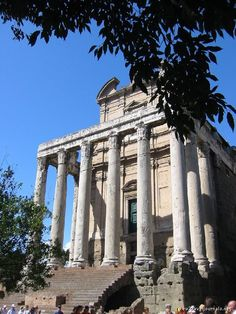 Temple of Julius Caesar, Rome, Italy    Classic columns - i like the branch…