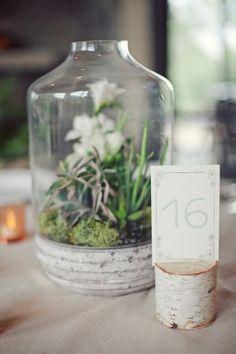 Terrarium wedding centerpiece | photography by http://jnicholsphoto.com/