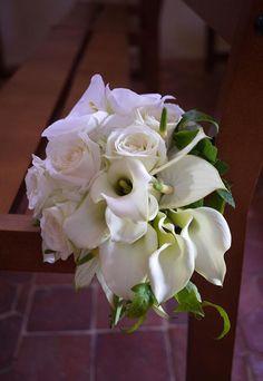 anturium, arums, hortensia, orchidée, rose