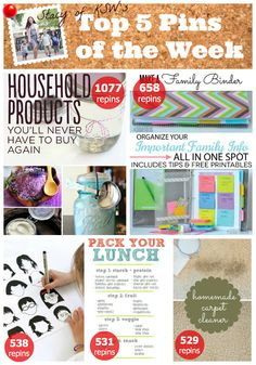 Top Pins: Helpful Household Tips, DIYs and Printables { I know this is a pin of a post about pins but they are so useful come see }