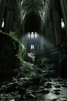 I think it's lovely when nature takes back the ruins of old buildings.